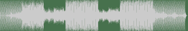 Steve Montana - Blaze Up (Original Mix) [Fabrique Recordings] Waveform