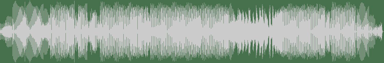Dino Lenny, Doorly - The Magic Room (Doorly Re-Chunk Mix) [Play It Say It] Waveform