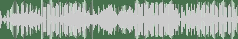 Irdi - Higher (Original Mix) [Alter Ego Digital] Waveform