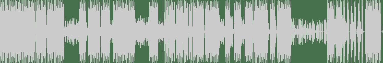 Dennis Slim - Destructive (Original Mix) [Physical Techno Recordings] Waveform