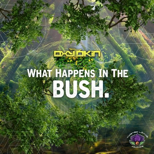 What Happens In The Bush