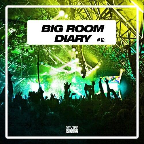 Big Room Diary, Vol. 12