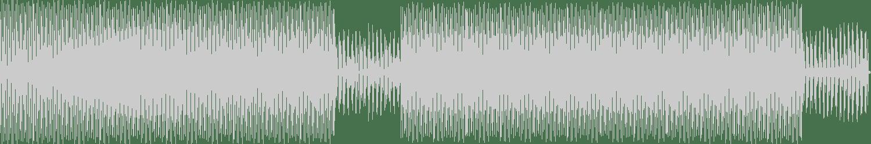Subismo - Phosphene 02 (Original Mix) [Primitive State Records] Waveform