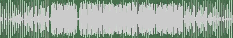 Next Door But One, BassSicks - Sundancing (Extended) [LW Recordings] Waveform