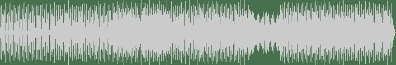 Subsignal - Dead Mans Dub (Original Mix) [Complex Textures] Waveform