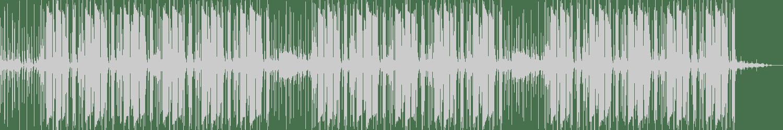 Funk Windows - Da Funk (Original Mix) [Sound-Exhibitions-Records] Waveform