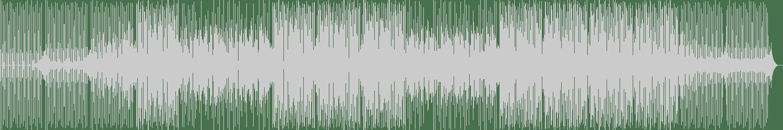Crystal Shakers - Praise Me (Original Mix) [Revenge Music] Waveform