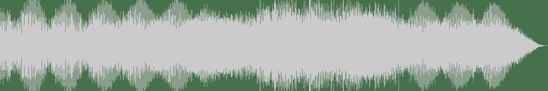 Nick Dunton, Richard Polson - Inceptive (Original Mix) [Ibadan Records] Waveform