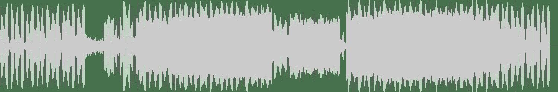 White Wizards - Im A Man (Darkfunk Mix) [Le Bien Et Le Mal Recordings] Waveform