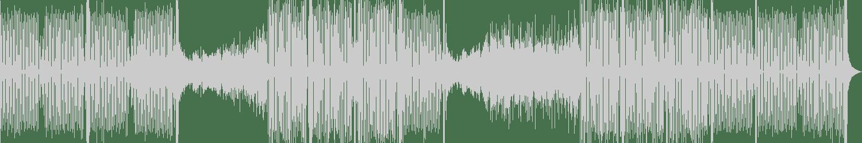 Yura Shtepa - Fhantom (Original Mix) [Trombax Records] Waveform