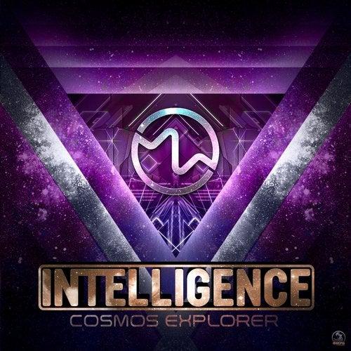 Cosmos Explorer