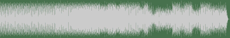 Kevin Reynolds - Liaisons (Original Mix) [NSYDE] Waveform
