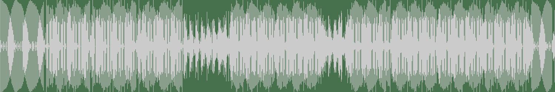 Frank Hurman, Tecca - Paradise (Tali Freaks Unda Deep Remix) [Miniaturesrec] Waveform