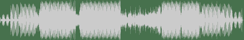 KlangKuenstler - Jam Master Jack (Original Mix) [Smiley Fingers] Waveform