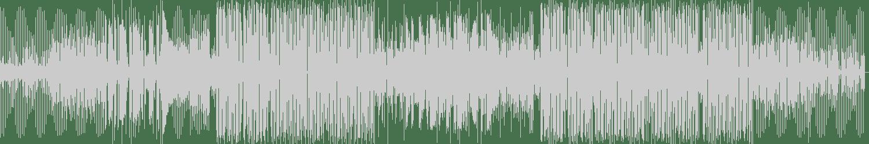 Carta - Haters (Original Mix) [Spinnin' Premium] Waveform