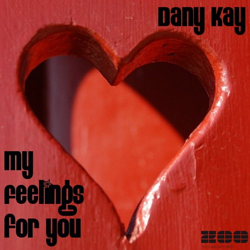 Dany Kay - My Feelings For You