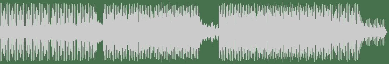 Chook - Nocturnal Animal (Aki Bergen & Richter Remix) [Lauter Unfug] Waveform