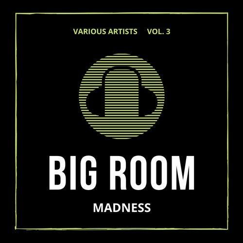 Big Room Madness, Vol. 3