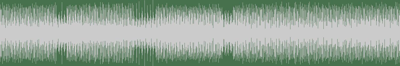 Hippnotik - Doimodul (Original Mix) [Vedana Records] Waveform