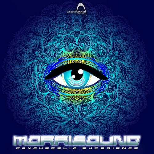 Psychedelic Experience               Original Mix