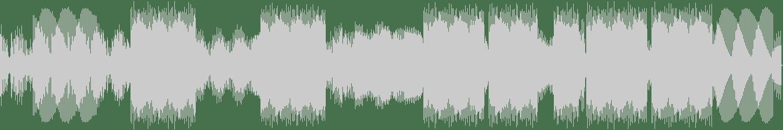 DJ Michael Flume - Agolele (Chus & Ceballos Remix) [Nervous Records] Waveform