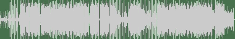 Shmanker - Plastic Cat (Original Mix) [Eastar Records ] Waveform