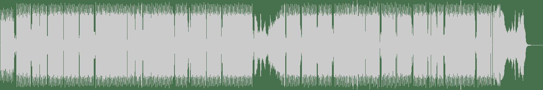 Paralocks - Disco Biscuit (Original Mix) [Free Radical] Waveform