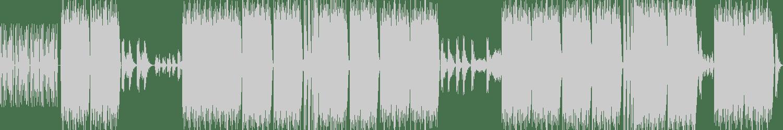 Autonomous Bass Heads - Paradise Garage (Original Mix) [dPulse Recordings] Waveform