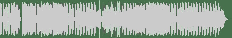 N'Bome - Pirate / Hooligan (Original Mix) [Signal Life] Waveform