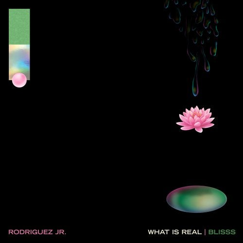What Is Real feat. Liset Alea