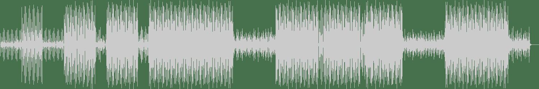 Dubfluss, Relock (Italy) - Saloom (Original Mix) [Serkal] Waveform
