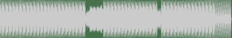 Endlec - Pressure Point (Original Mix) [Nachtstrom Schallplatten] Waveform