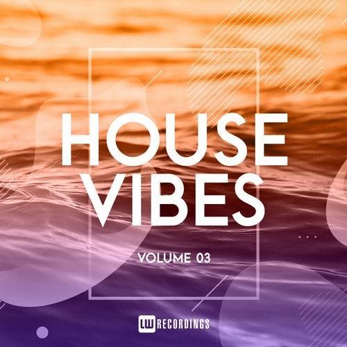 House Vibes, Vol. 03