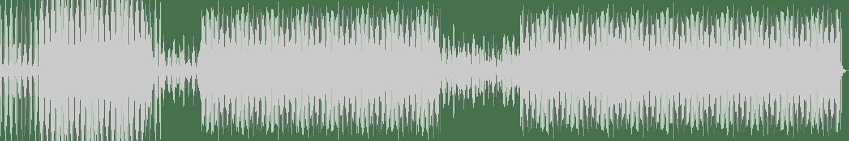 John Rivera - A State of Illusion (Original Mix) [Noisy Darts Records] Waveform