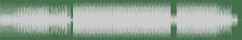 Randomer - Van Pelt (Original Mix) [Dekmantel] Waveform