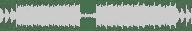 Tony Piper - Roll (Original Mix) [Kira Music] Waveform