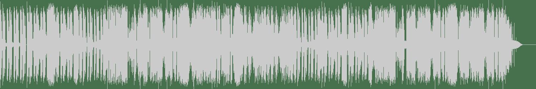 Lie Pie - Robonigga (Original Mix) [Monstra Records] Waveform