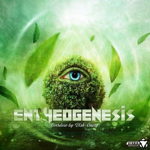 Entheogenesis