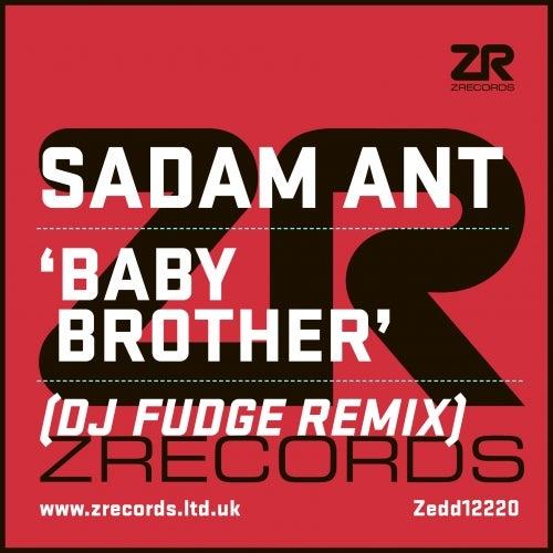 Baby Brother (DJ Fudge Remix)