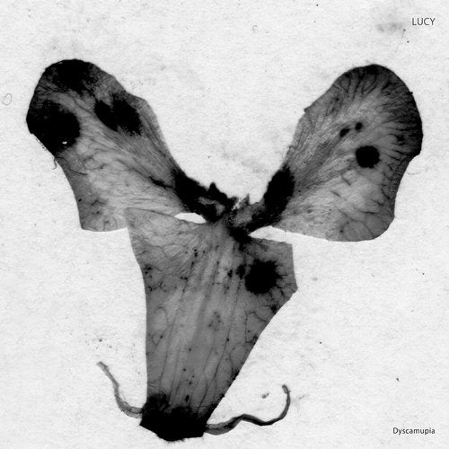 Dyscamupia