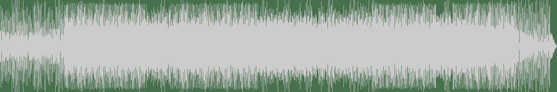 N@m@sté - Flash (Original Mix) [Pump Music Records] Waveform