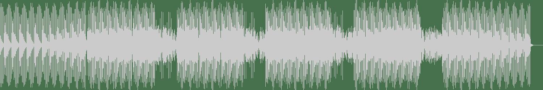 Chicago Hustlers - Going On (Original Mix) [Deepjacking Recordings] Waveform