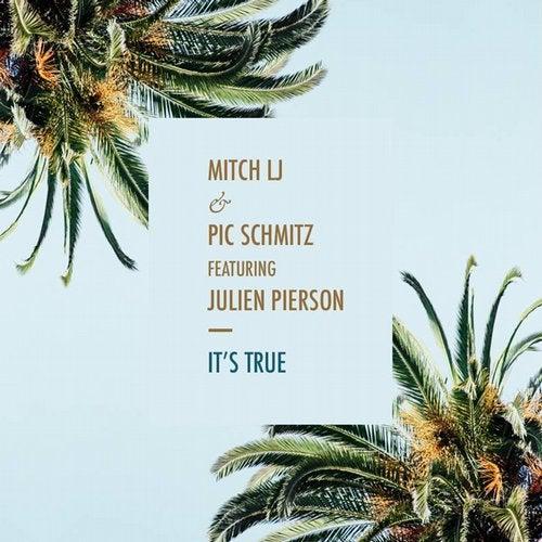 It's True (feat. Julien Pierson)