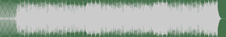 Tony Lizard - What I Want (Dub Mix) [Say Yes Records] Waveform