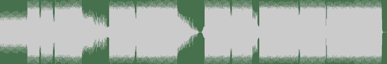 Amir Razanica - Virus (Original Mix) [Subwoofer Records] Waveform