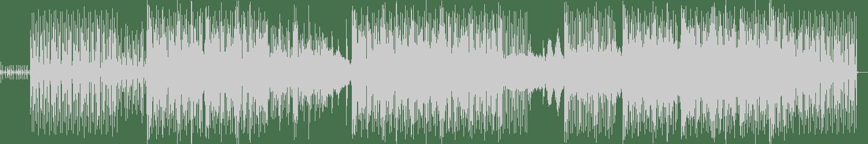 Amentia - Serpent (Bernstein (CH) Remix) [Amselcom] Waveform