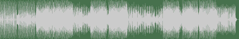 Gogan - Entire System (Original Mix) [Who Else Black] Waveform
