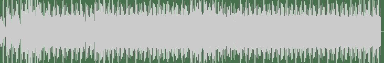 Nobuyuki Tokunaga - Serious Deal (Toru Ikemoto Remix) [Plus Records (Plus Tokyo)] Waveform