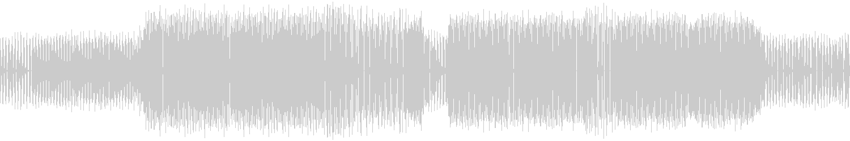 Noize Makerz - Pulse (Original Mix) [Border Records] Waveform