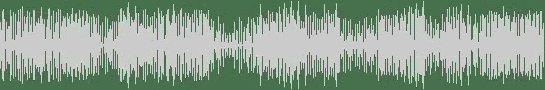 Timo Maas, James Teej - Cuba (Original Mix) [Rockets & Ponies  ] Waveform